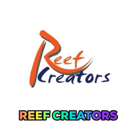 Watch and share Reef Creators GIFs by Reef Creators on Gfycat