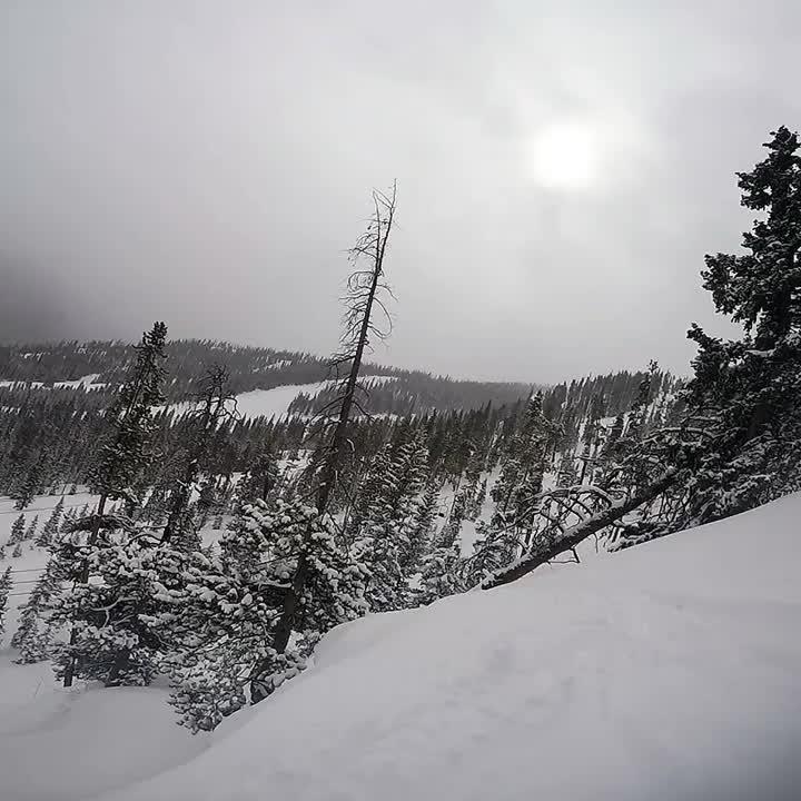 Is, popular, skiing, Skiing GIFs