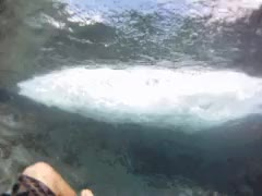 Watch tide pools GIF on Gfycat. Discover more hawaii, hike, makapuu, tide pool, winter break GIFs on Gfycat