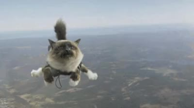 Watch and share Skydiving GIFs and Skydive GIFs by Streamlabs on Gfycat