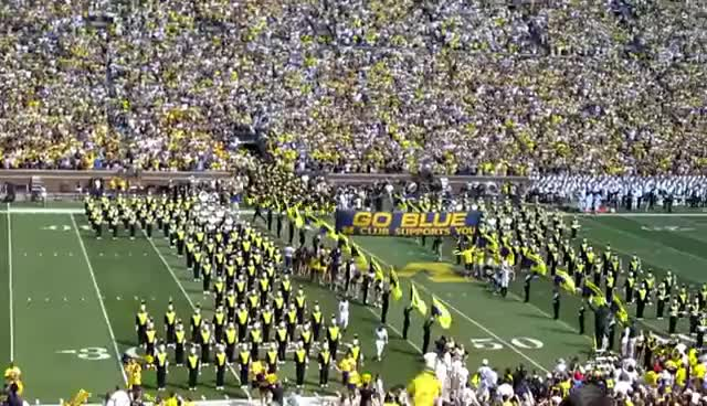Watch Go Blue GIF on Gfycat. Discover more Blue GIFs on Gfycat