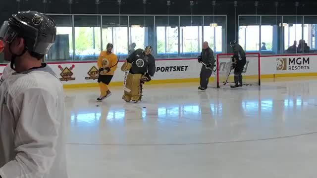 Watch Vegas Golden Knights - 🌸's breaking in his new goldie pads 😍😍😍 GIF on Gfycat. Discover more Vegas Golden Knights, hockey GIFs on Gfycat