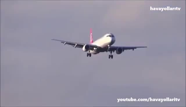 Watch and share Türk Hava Yolları (THY) - Turkish Airlines GIFs on Gfycat