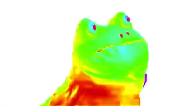 Watch and share Rainbow Frog Dances To Darude Sandstorm GIFs on Gfycat