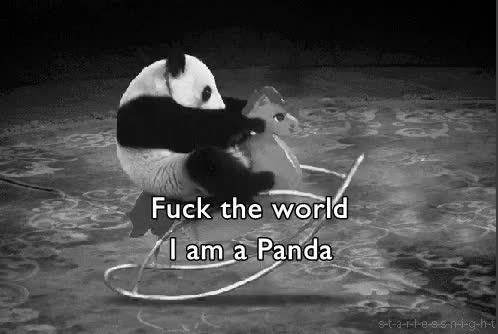 Watch and share Pandas Are Life GIFs and Panda GIFs on Gfycat