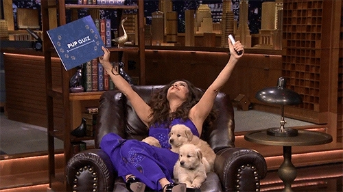fal pals, fallon tonight, jimmy fallon, puppies, salma hayek, the tonight show, the tonight show starring jimmy fallon, yahoo tv, Salma Hayek was living her best life (with puppies!) on The  GIFs
