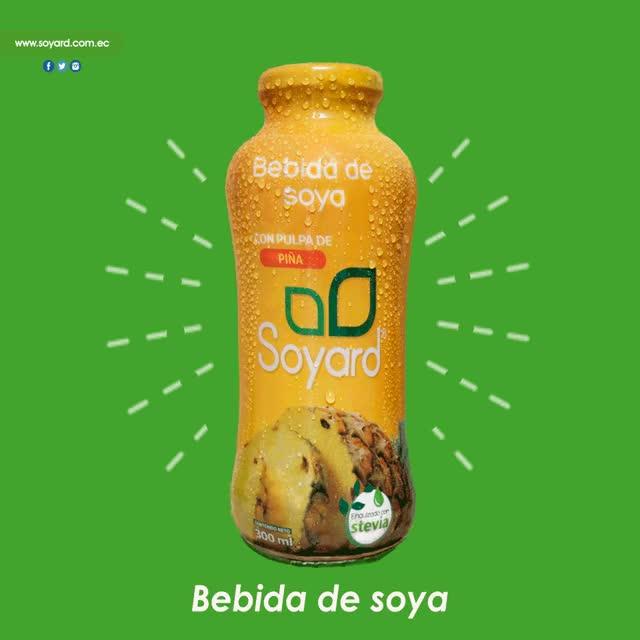 Watch and share Bebida De Soya GIFs and Soja GIFs by Mario Morocho Riofrio on Gfycat