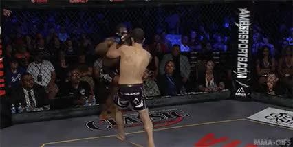 Watch mma-gifs GIF on Gfycat. Discover more augusto mendes, bjj, brazil, choke, grappling, lfc, martial arts, mma, submission, tanquinho, triangle choke GIFs on Gfycat