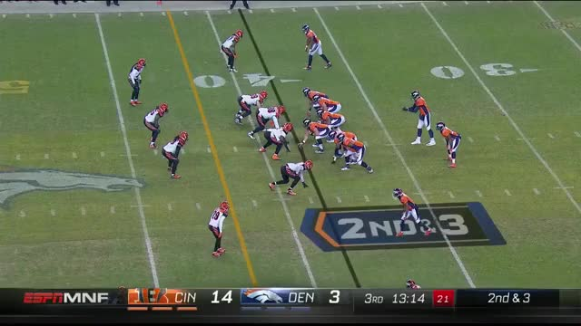 Watch and share Bengals Play 17 GIFs by dsmith96 on Gfycat