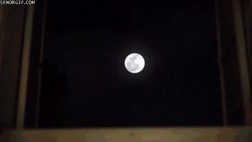 Watch moon GIF on Gfycat. Discover more related GIFs on Gfycat