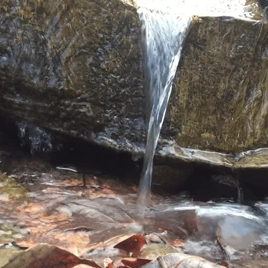 Watch Water GIF by @yourrexcellency on Gfycat. Discover more nature, water GIFs on Gfycat