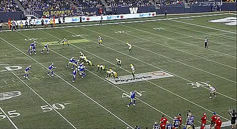 Watch and share Blue Bombers GIFs and Edmonton GIFs by Archley on Gfycat