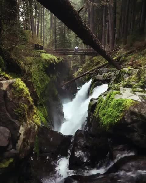 Watch and share Sol Duc Falls GIFs by vani  on Gfycat