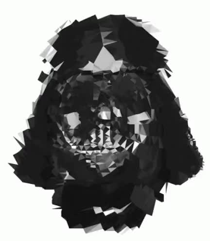 Watch and share Darth GIFs on Gfycat