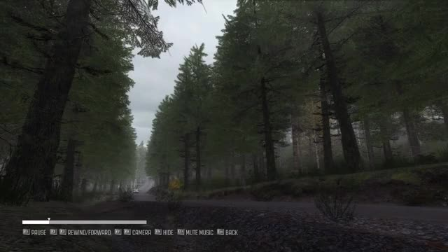 Watch Dirt Rally 2019.01.07 - 19.44.12.01 GIF on Gfycat. Discover more related GIFs on Gfycat