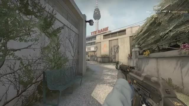Watch and share The Flashbang That Won The Round GIFs on Gfycat
