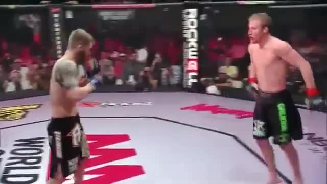 Watch and share 24 Year-old Justin Gaethje Makes Brian Cobb Tap From Leg Kicks GIFs by jo.judo on Gfycat