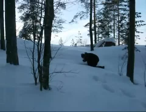 Watch and share Big Foot In Finland GIFs on Gfycat