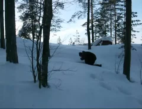 Big foot in Finland GIFs
