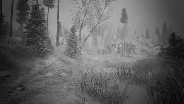 Watch and share Kholat GIFs and Blurry GIFs by Alexander452 on Gfycat