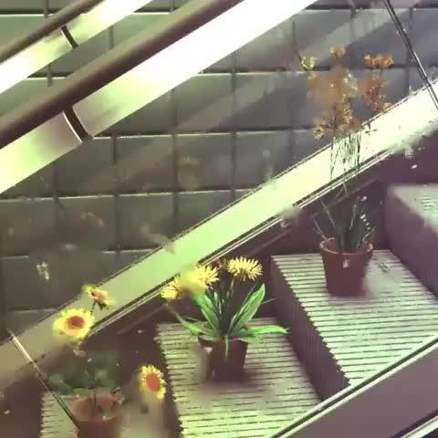 hmmmgifs, lolwat, Video by cgaexcellence GIFs