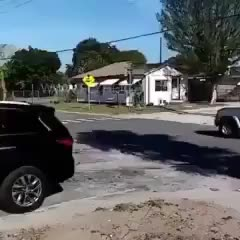 Watch and share Man Trying To Take Out A Sign. (reddit) GIFs on Gfycat