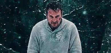 Watch and share Liam Neeson GIFs and Snowing GIFs on Gfycat