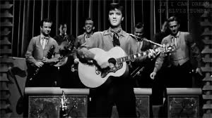 Watch and share Elvis Presley GIFs and King Creole GIFs on Gfycat