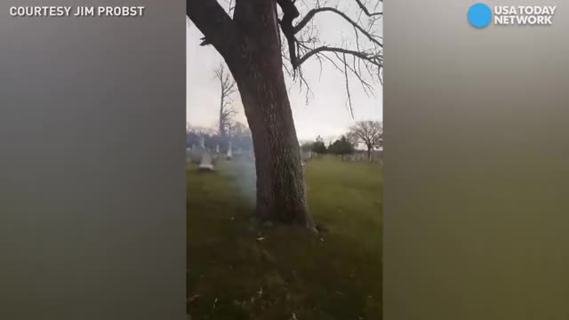 Watch and share Lightning Struck St. Louis Tree In Cemetery Watch Video GIFs by Jackson3OH3 on Gfycat