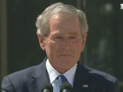 Watch and share George Bush Sad GIFs on Gfycat