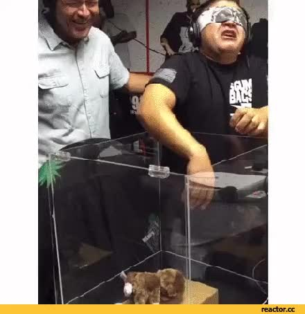 Watch and share Fear GIFs on Gfycat