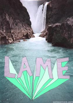 Watch and share Lame GIFs on Gfycat