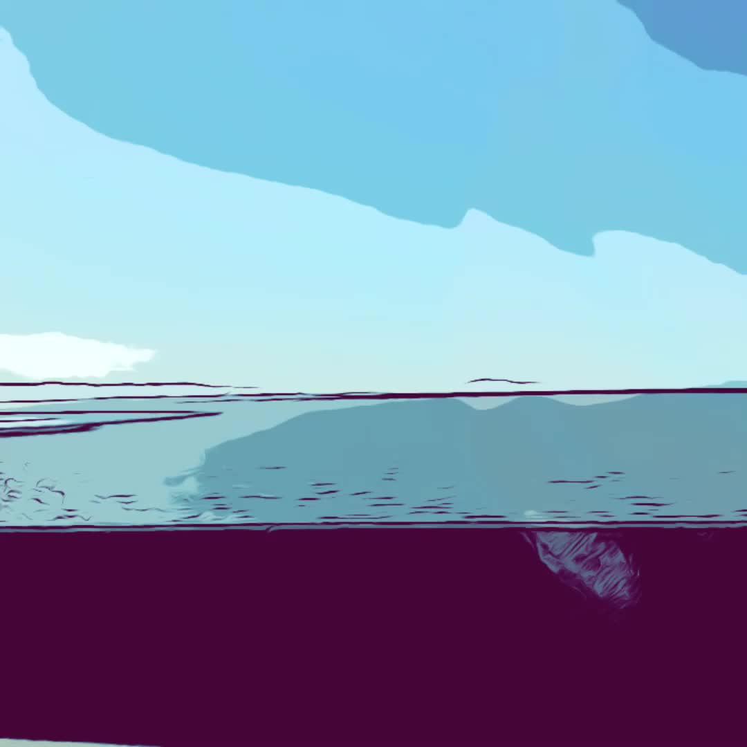 timelapse GIFs