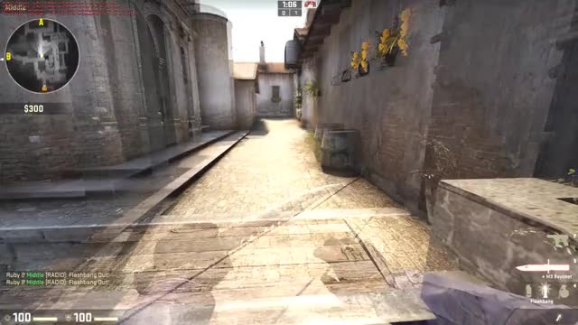Watch and share Inferno Bug GIFs on Gfycat