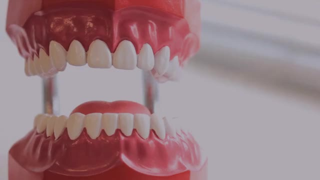 Watch and share Dental-american-group-best-dentist-in-kendall-we GIFs by Dental American Group on Gfycat
