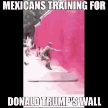 Watch and share Trump Wall GIFs on Gfycat