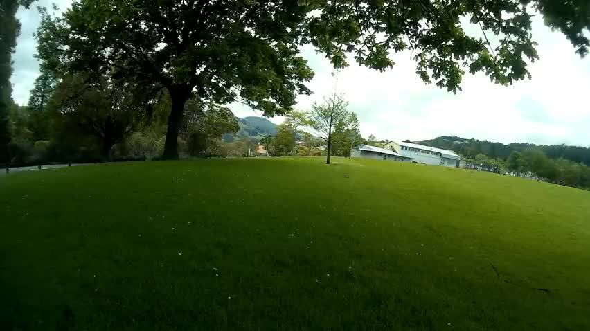 multicopter, Skimming the grass - FPV practice today [0:14] (reddit) GIFs