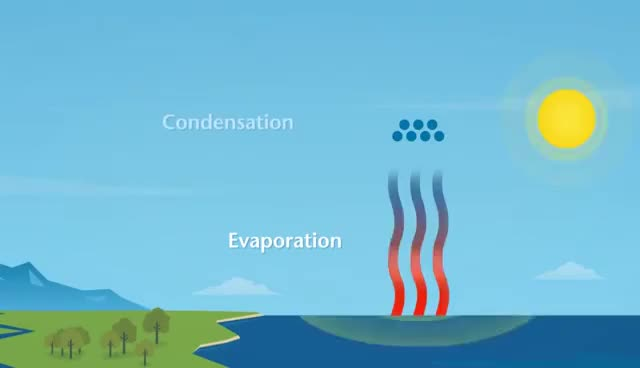 Watch and share How Does Rain Form And What Is The Water Cycle? GIFs on Gfycat