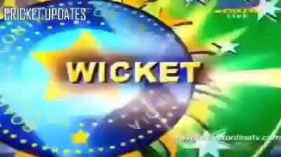 Watch and share Cricket GIFs by Sürøĵit Dås on Gfycat