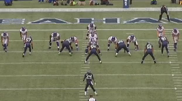 Watch and share Seahawks Bear Front Gif GIFs by Rich Madrid on Gfycat