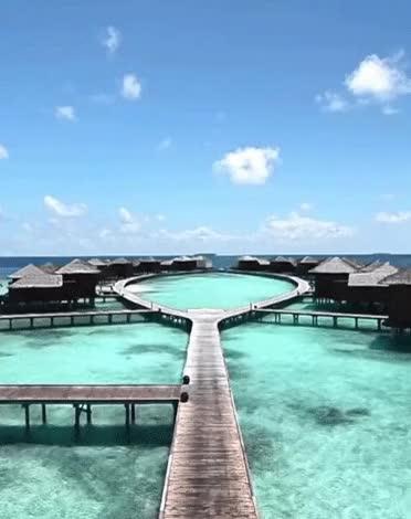 Best Of Maldives Luxury Resorts Baros Maldives Maldives Resorts Private Luxury Island Gif Find Make Share Gfycat Gifs