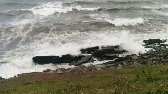 Watch and share Ferocious Atlantic GIFs on Gfycat