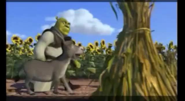 Watch and share Shrek 1 Technical Goofs GIFs on Gfycat