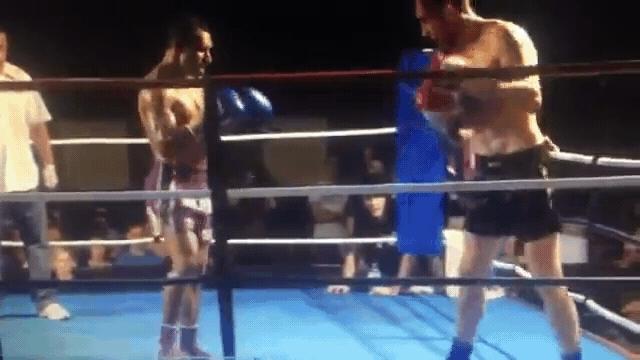 kick, knockout, muaythai, Devasting muaythai kick knockout GIFs