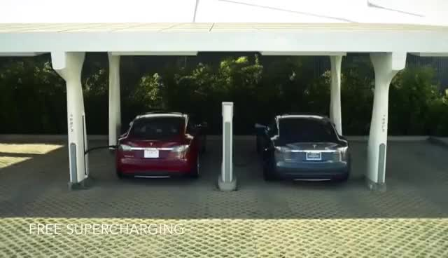 Watch and share Tesla GIFs on Gfycat