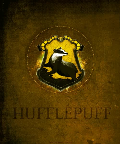 Watch 3. Cedric Diggory! GIF on Gfycat. Discover more related GIFs on Gfycat