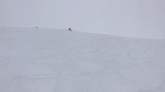 Watch and share Powder GIFs and Skiing GIFs on Gfycat