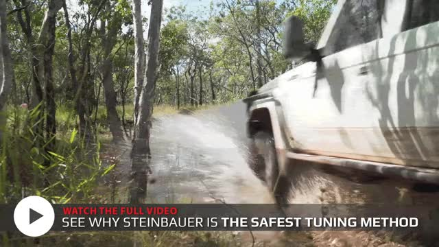 Watch and share Diesel Care Steinbauer Tune-safe GIFs on Gfycat
