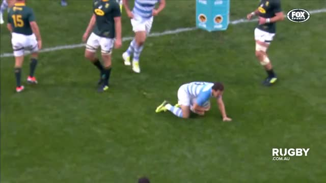Watch and share Highlights GIFs and Springboks GIFs on Gfycat
