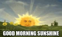 Watch and share Good Morning Sunshine GIFs on Gfycat